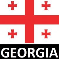 بیمه مسافرت سامان گرجستان